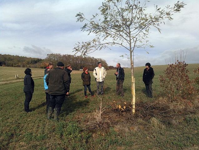 FormationAgroforesterie_08112018_SylvaTerra_ARDEARGrandESt-2
