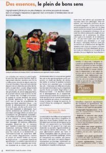 Article-MeuseECHOS_Agroforesterie-SylvaTerra_28102019