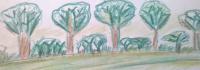 logo-Permagforest